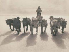 Australasian-Antartic-Expedition-6